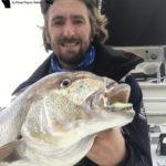 pêche découverte