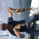 Ou pêcher à Saint Tropez