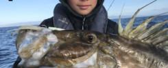 Pêche Hyères