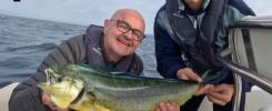pêche Daurade Coriphène