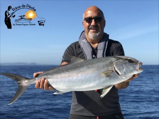 pêche sériole aux vifs